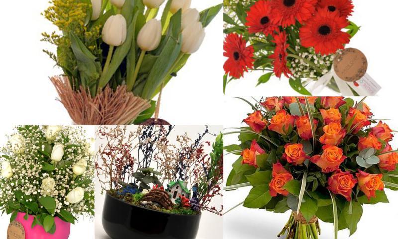 Türkiye'nin Her Yerinden Online Çiçek Siparişi Fırsatı